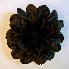 "Black Magic Dahlia Artificial Flower Hair Clip/Pin Brooch, Black by Yves Decor. $6.90. Closure: Round Metal Pin/Clip. Height: 1.5"". Color: Black. Flower: Black Magic Dahlia. Diameter: 5"". This beautiful hair clip/pin brooch is handmade with high quality materials, leaving you with a silk flower that blooms far beyond the cheaper alternatives."