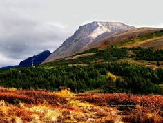 Flat Top Mt. in Anchorage.  A 1.5 mile hike with a 1280 ft gain- and right in city limits.