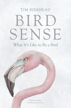 """Bird Sense: What It's Like to Be a Bird"" by Tim Birkhead How do birds see, hear, smell & feel the world? The perfect book for anybody who has ever wondered what it would be like to be a bird."