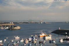 Porto de Abrigo (Sines)