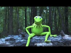 Kermit the Frog Takes the ALS Ice Bucket Challenge - YouTube
