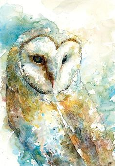 Watercolor Paintings Of Animals, Owl Watercolor, Animal Paintings, Animal Drawings, Art Drawings, Paintings Of Owls, Owl Artwork, Owl Quilts, Funny Art