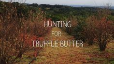 Hunting for truffle butter with Pepe Saya and Duncan Garvey in the NSW Southern Highlands.