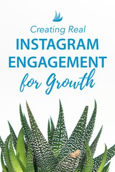 Want more growth on Instagram? It's all about engagement. Here's how to increase your Instagram engagement. #instagramtips #instagrammarketing #socialmediatips