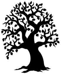 Big leafy tree silhouette