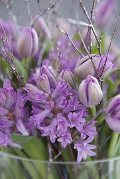 Fyll vasen med svibler, tulipaner og grener til advent.