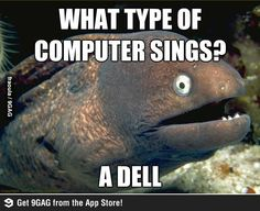 What type of computer sings?