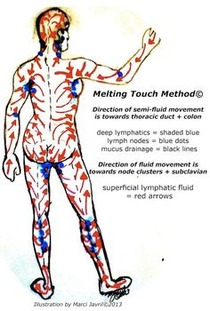 Standard Treatment Of Lymphedema Manual Lymphatic Drainage