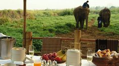 Four Seasons Elephant Camp in Thailand  #Thailand #Travel #Luxury #Getaway #Vacation #Exotic www.AZFoothills.com