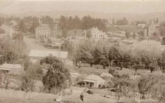Clunes, 1907. Lovely photo. State Library of Victoria Image H96.200/1623