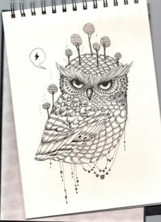 An older drawing that was the inspiration for all the current drawings!   I love drawing owls. This one is a Forest Owl.