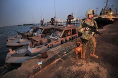 Master-at-Arms Class John Winjum, a military working dog handler, assigned to Camp Lemonnier, Djibouti security forces stands duty at the Port of Djibouti during an inspection of ships, tugboats and the pier. Military Working Dogs, Military Dogs, Police Dogs, Military Police, Military Service, Army, Loyal Dogs, War Dogs, Belgian Malinois