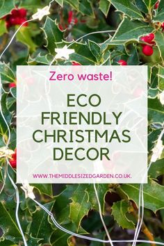 Zero waste Christmas decorations from your garden. Homemade decorations save money, look gorgeous and are eco-friendly. #Christmas #garden #middlesizedgarden #backyard Easy Garden, Garden Ideas, Vintage Christmas, Christmas Diy, Christmas Garden Decorations, Vintage Garden Parties, Homemade Decorations, Insect Hotel, Natural Christmas