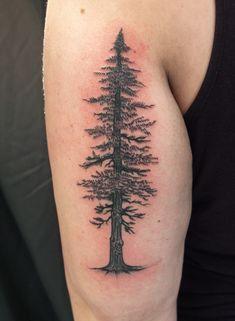 tree tattoos arm - Google Search