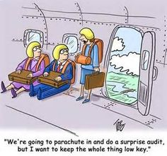 *parachute in to do an audit--haha--I remember those surprise audit days! Accounting Puns, Accounting Career, Funny Friday Memes, Friday Humor, Monday Memes, Office Humor, Work Humor, Taxes Humor, Payroll Humor