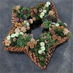 DIY star-shaped hanging wreath or table centerpiece with pinecone and tree nuts.Could frame the star with pinecones glued at tips them oasis star inside.With pine cones you can do the most beautiful things. The 10 most beautiful deco . Noel Christmas, Rustic Christmas, All Things Christmas, Christmas Wreaths, Christmas Decorations, Christmas Ornaments, Pine Cone Crafts, Wreath Crafts, Christmas Crafts