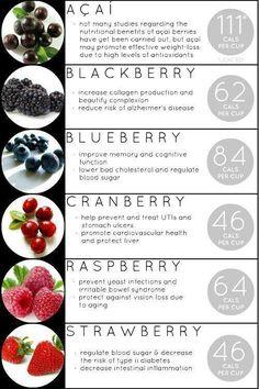 Fat Burning Foods For Women Over 40 http://freebonusdownload.net/fatburningfoods/