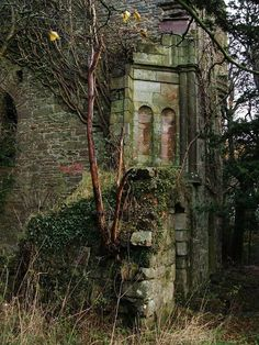 Kilmahew Castle - SW corner by Lairich Rig - near to Geilston, Argyll And Bute, Great Britain