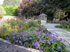One of our country garden designs in North Somerset. It is Autumn but Geranium Rozanne is still flowering her heart out!