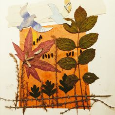 Autumn collage.