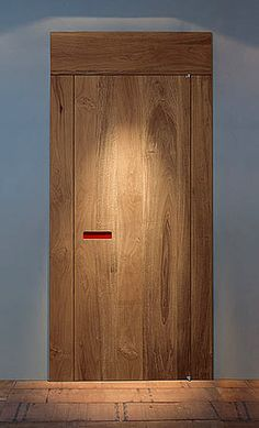 Yes, this might work - consider ash door with darker stained ash trim  modern door, nice trim