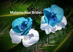 TURQUOISE & White Orchid Hair flower, Wedding, hair accessory, headpiece,Tropical Hair Flower, Real Touch, Fascinator, Beach, flower clip by MalamaPuaBridal on Etsy