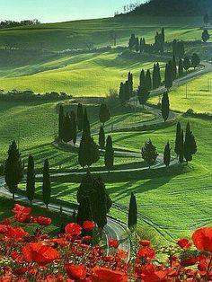 Typisch Toscaans landschap. Bekijk onze website www.toscaansehuizen.nl voor een totaalaanbod van vakantiehuizen met zwembad in Toscane.