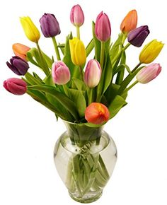 Benchmark Bouquets MultiColored Tulips With Vase *** You can get additional details at the image link.