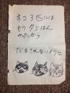 Animals And Pets, Funny Animals, Cute Animals, I Love Cats, Cool Cats, Japanese Funny, Three Cats, Bad Cats, Kawaii Cat
