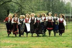 bunads from different fylker - from left:  West Telemark - East Telemark - Nordland - Hardanger in Hordaland - Hallingdal in Buskerud - Beltestakk from East Telemark - Gudbrandsdal in Oppland - Setesdals in Aust Agder - Romerike in Akershus - Valdres in Oppland