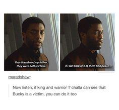 Captain America: Civil War. T'challa understands Bucky isn't a villain.
