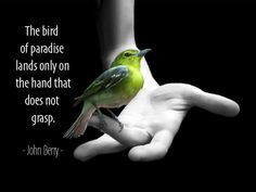 The bird of paradise lands only on the hand that does not grasp.