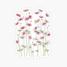 """""""Pink Cosmos Flowers"""" Canvas Print by JRoseDesign Bubble Stickers, Cute Stickers, Anime Stickers, Laptop Stickers, Journal Stickers, Planner Stickers, Deco Paris, Cosmos Flowers, Bullet Journal Ideas Pages"""