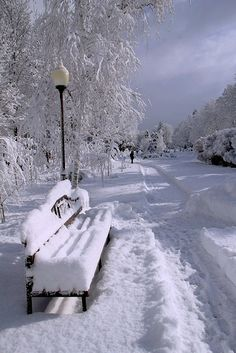 Snowy bench. Longing for this again!)