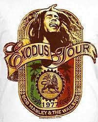 Rasta Art, Rasta Lion, Bob Marley Exodus, Sublime Sun, Reggae Bob Marley, Bob Marley T Shirts, Nesta Marley, Bob Marley Quotes, The Wailers
