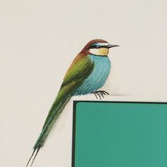 #bijeneter #birds #painting #little mural