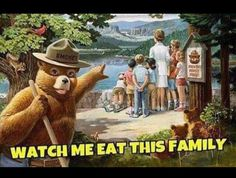 Smokey Bear - Pointing Out Nice View - Vintage Poster (Art Prints, Wood & Metal Signs, Canvas, Tote Bag, Towel) Weekender, Mau Humor, Funny Jokes, Hilarious, Silly Memes, Sarcastic Humor, It's Funny, Sarcasm, Smokey The Bears
