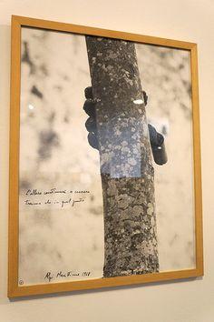 """""""Alpi marittime"""" Giuseppe Penone. """"Colección IX"""" Colección Fundación Arco en el CA2M. Madrid. #ArteContemporáneo #ContemporaryArt #Art #Arte #Arterecord 2014 https://twitter.com/arterecord"""