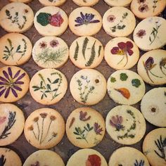 "335 Likes, 26 Comments - Lori Stern (@loriastern) on Instagram: ""citrus thyme pressed flower #shortbread #cookies for the fabulous @kyledewoody and the…"""