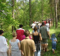 Ook met een grote groep kunt u gezellig #wandelen in de omgeving van Landgoed de Biestheuvel in #Hoogeloon