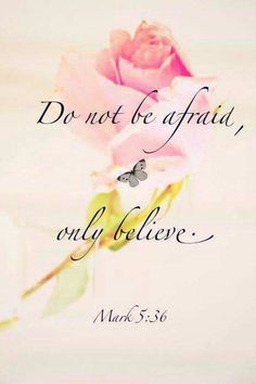 "Mark 5:36.....Jesus told Jairus, the synagogue ruler, ""Don't be afraid; just believe."""