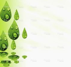 Reflected drops, leaves, stock photo 76455053 - iStock