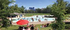 Summer doesn't have to break the bank. Finding things to do in Calgary during the summer that don't come with a hefty price tag can help to leave more money in the budget for weekend trips, back to...