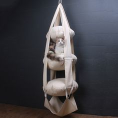 The Cat's Trapeze 3 Level by  Esther van der Wurff