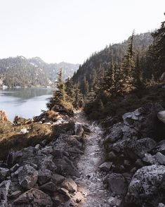 Endless trails in the alpine lakes wilderness