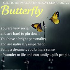 Celtic Animal Astrology: Butterfly (September 30 - October 27)