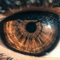 Brown eyed wonder