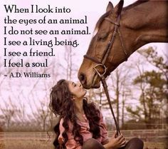 I see a friend, not an animal