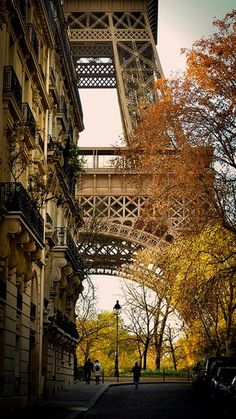 •♥•Falling for Autumn •♥•