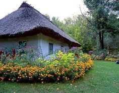 My grandmas house had flowers like this, even more in the backyard and I'd hide in them. Beautiful World, Beautiful Places, Visit Poland, Ukrainian Art, Family Roots, Photographer Portfolio, Old Houses, Small Houses, Country Life